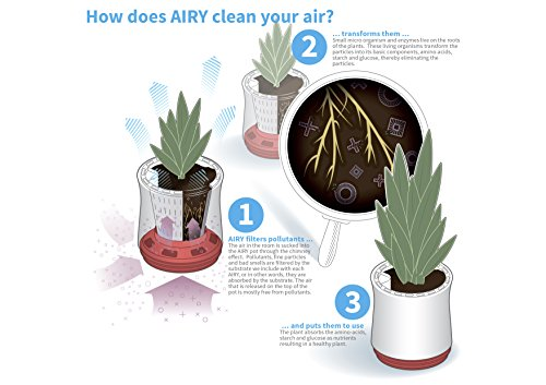 AIRY-natural-air-purifier-snow-white-0-2