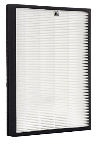 Alexapure-Breeze-Certified-Replacement-Filters–1-True-HEPA-Filter-and-1-Activated-Carbon-Filter-0-1