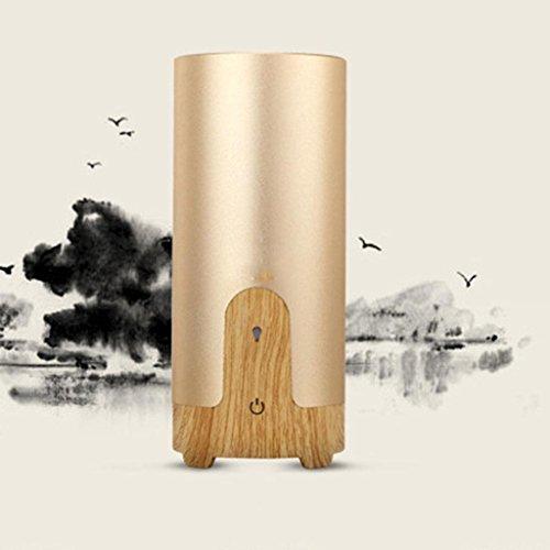 GOUGOU-Car-Humidifier-Car-Spray-Charger-USB-powered-car-air-purifier-0