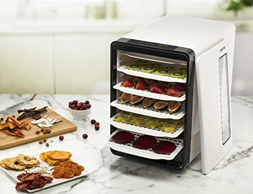 Gourmia-Food-Dehydrator-With-Touch-Digital-Temperature-Control-Ten-Drying-Trays-Plus-Beef-Jerky-Sausage-Hanging-Rack-Sleek-Design-Transparent-Window-Bonus-Cookbook-Black-0-0