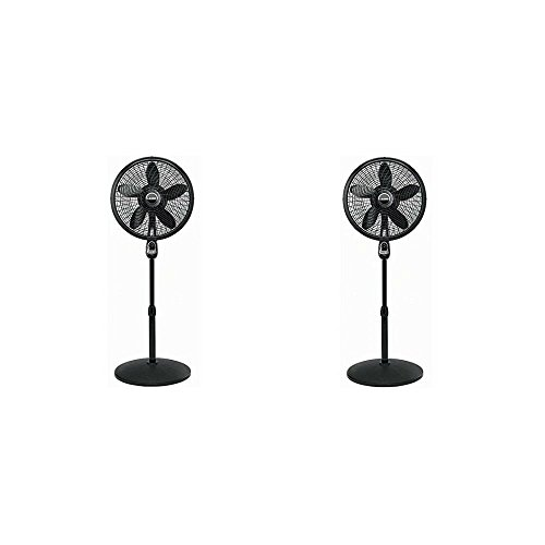 Lasko-18-Pedestal-Fan-with-Remote-Control-1843-Pack-of-Two-0