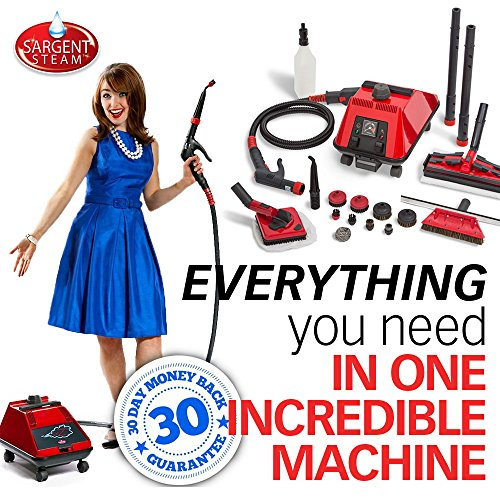 Sargent-Steam-Cleaner-BRZ2-Portable-Multi-Purpose-High-Pressure-Dry-Vapor-Steamer-Machine-with-Attachments-0-0