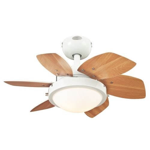 Westinghouse-7863100-Quince-Two-Light-24-Inch-Reversible-Six-Blade-Indoor-Ceiling-Fan-0-2