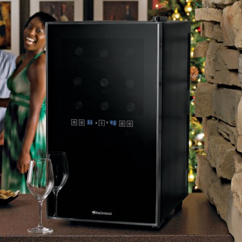 Wine-Enthusiast-Silent-18-Bottle-Two-Temp-Touchscreen-Wine-Refrigerator-0-1